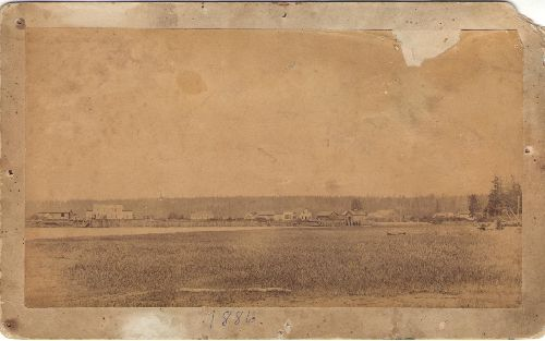 Cabinet card photograph of Stanwood when Washington was still a Territory